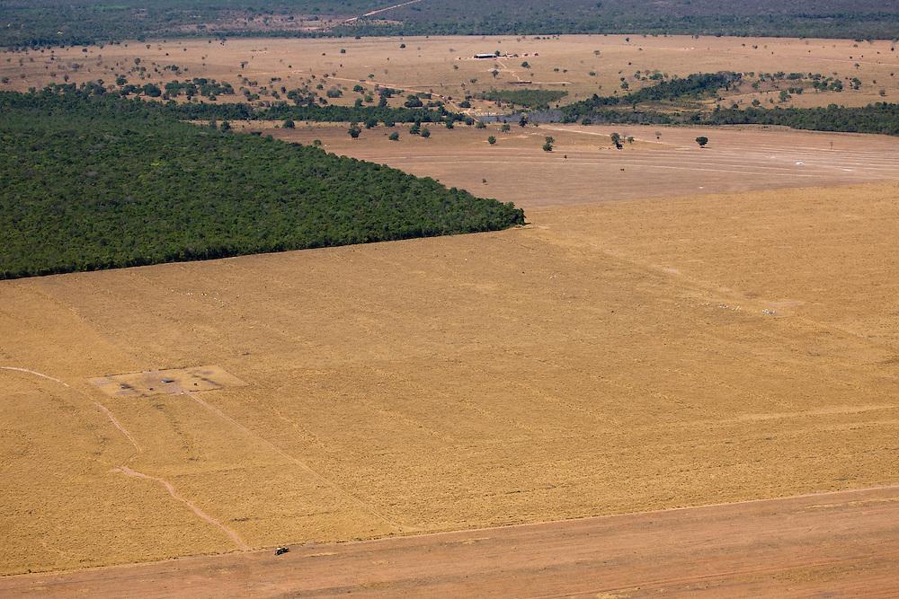 Gleba Ribeirao, Mato Grosso, Brazil, August 7, 2008. Daniel Beltra/Greenpeace