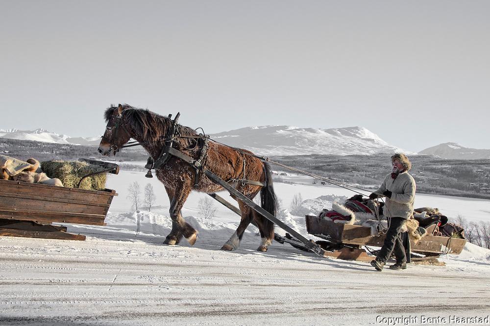 I 2016 er det 20. gang lasskjørerne fra Tydal tar turen til Rørosmartnan. Turen over fjellet tar tre dager, og ved avreise var det 26 speikende kalde kuldegrader. Tydalingen Oddmund Dyrhaug og selbyggen Per Morten Storhaug er blant veteranene i følget. Her passeres fjellbygda Stugudal med grensefjellene Sylan i bakgrunnen, og alle passasjerene må bruke apostlenes hester i de brakke bakkene opp fra Stugusjøen.