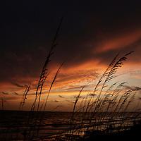 2009 Englewood, Florida.