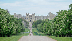 © Licensed to London News Pictures. 11/05/2018. WINDSOR, UK.  Platforms for television crews to work from have been erected (right) on The Long Walk as preparations continue in Windsor for the upcoming wedding between Prince Harry and Meghan Markle on 19 May.   The newly married couple will ride down The Long Walk in a horsedrawn carriage towards Windsor Castle as thousands of people are expected to visit the town for what has been billed as the wedding of the year.  Photo credit: Stephen Chung/LNP