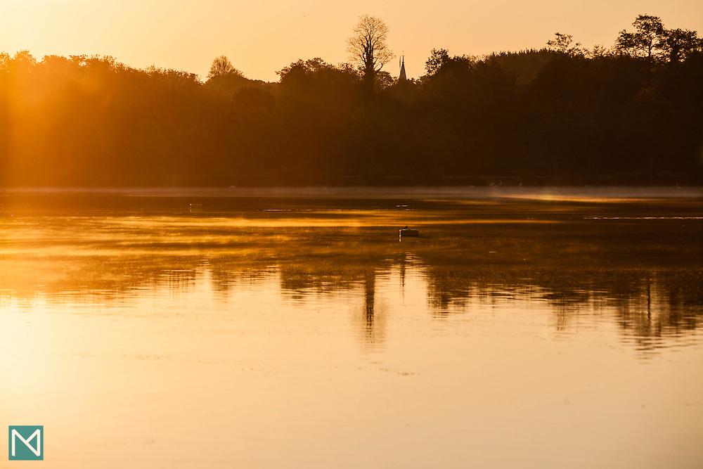 Mist at sunrise, Rickmansworth Aquadrome