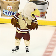 The Boston College Eagle is seen during The Beanpot Championship Game at TD Garden on February 10, 2014 in Boston, Massachusetts. (Photo by Elan Kawesch)