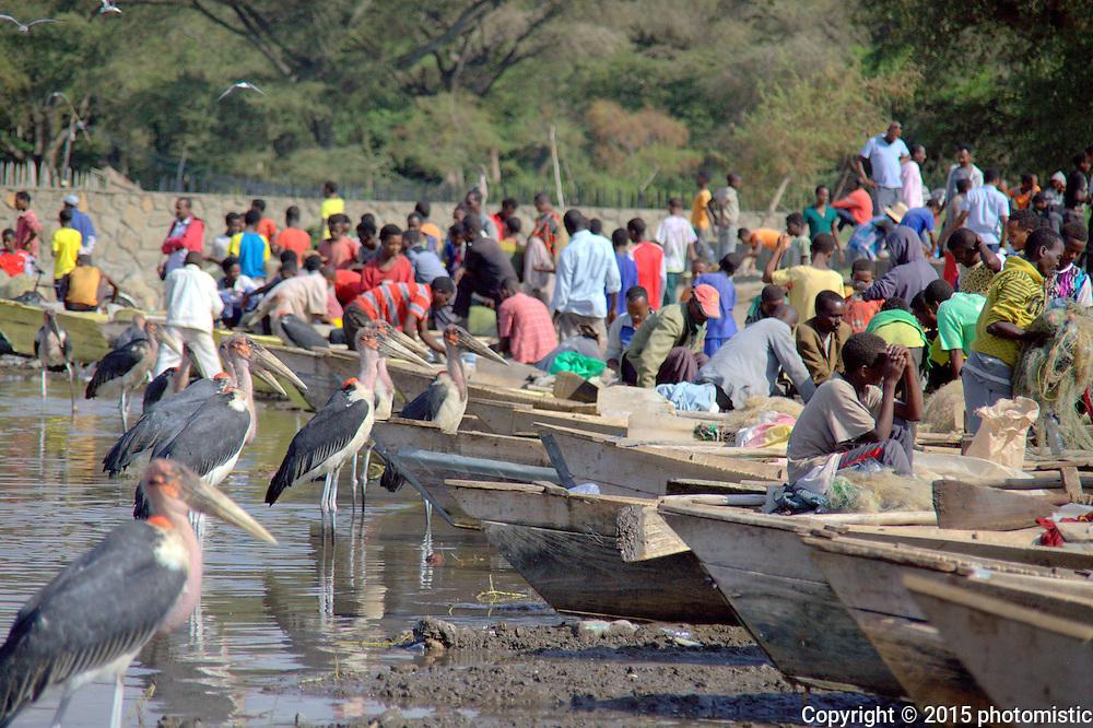 Lake Awassa fish market