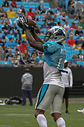 Carolina Panthers wide receiver Jaydon Mickens (14) catches a pass during Fan Fest at Bank of America Stadium, Friday, Aug. 2, 2019, in Charlotte, NC. (Brian Villanueva/Image of Sport)