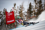 Bode Miller, USA, competes in the Men's Downhill on Birds of Prey course during the Audi FIS Birds of Prey World Cup in Beaver Creek, Colo., Saturday, Dec. 5, 2009.  Miller finished fourth in 1:43.94.