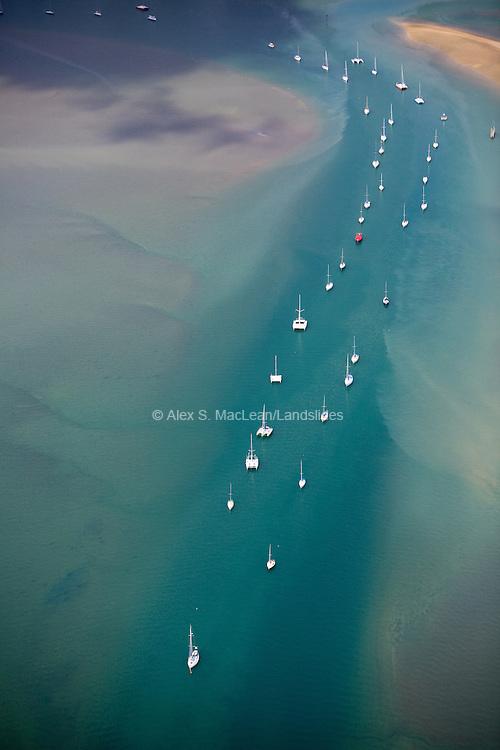 Sailboats on Moorings, Auckland, New Zealand, 2006