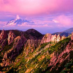 Mt. Rainier from Mt. Margaret Backcountry, Mt. St. Helens National Volcanic Monument, Washington, US
