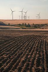 electric generating windmills in the wheat farming Palouse region of eastern Washington, USA