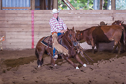 September 23, 2017 - Minshall Farm Cutting 5, held at Minshall Farms, Hillsburgh Ontario. The event was put on by the Ontario Cutting Horse Association. Riding in the $25,000 Noivce Horse Class is Joe Hudon on Little Zack Lena owned by the rider.