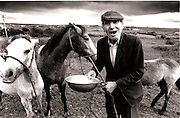 Martin Quinn ,Milltown Malbay Co Clare Feeding his horses on the farm in West Clare 1995...Photograph by Eamon Ward Freelance /The Clare People....(Highest Quality Digital File will be available if Chosen for Book)....