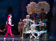 La Bayadere <br /> A ballet in three acts <br /> Choreography by Natalia Makarova <br /> After Marius Petipa <br /> The Royal Ballet <br /> At The Royal Opera House, Covent Garden, London, Great Britain <br /> General Rehearsal <br /> 30th October 2018 <br /> <br /> STRICT EMBARGO ON PICTURES UNTIL 2230HRS ON THURSDAY 1ST NOVEMBER 2018 <br /> <br /> Marianela Nunez as Nikiya <br /> A Bayadere and a temple dancer <br /> <br /> Vadim Muntagirov as Solor <br /> A warrior <br /> <br /> Natalia Osipova as Gamzatti <br /> <br /> Thomas Whitehead as Rajah <br /> <br /> <br /> Photograph by Elliott Franks Royal Ballet's Live Cinema Season - La Bayadere is being screened in cinemas around the world on Tuesday 13th November 2018 <br />