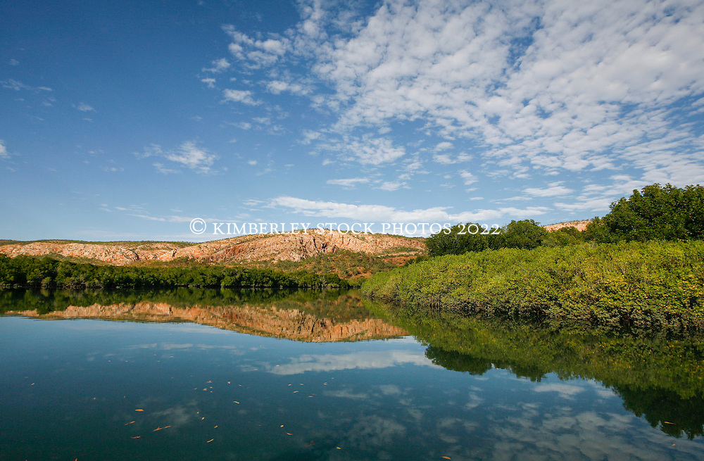 Mangroves reflected in still water in Poulton Creek in Talbot Bay on the Kimberley coast.