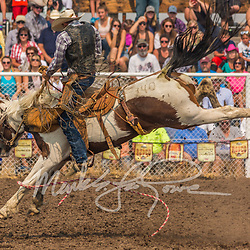 Ranch Saddle Bronc