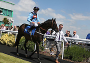 Jockey Luke Morris on Sandy Cove in the parade ring before the 2.50 race at Brighton Racecourse, Brighton & Hove, United Kingdom on 10 June 2015. Photo by Bennett Dean.
