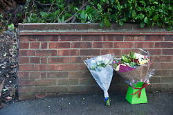 ©Licensed to London News Pictures 01/11/2019.<br /> Orpington,UK. Flowers have been left at the scene of last nights fatal bus crash on Sevenoaks Road, Orpington, South East London. A 60 year old male bus driver was pronounced dead at the scene.  A man has been arrested on suspicion of dangerous driving. Photo credit: Grant Falvey/LNP