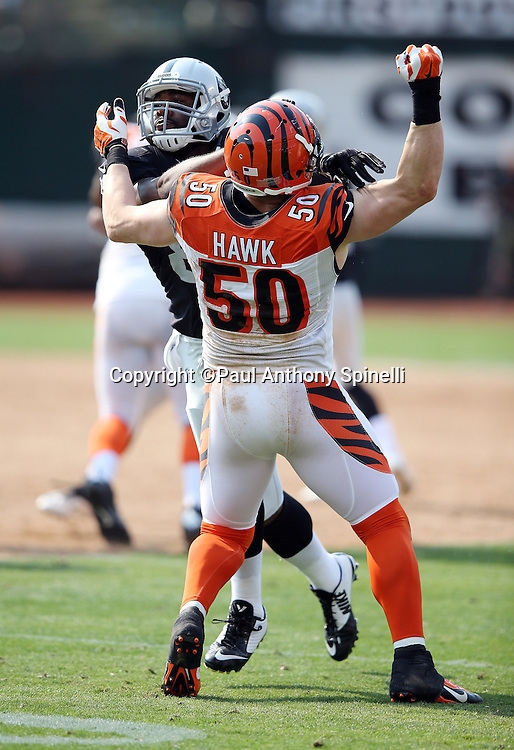 Cincinnati Bengals linebacker A.J. Hawk (50) tries to avoid a penalty on a pass route run by Oakland Raiders rookie tight end Clive Walford (88) during the 2015 NFL week 1 regular season football game against the Oakland Raiders on Sunday, Sept. 13, 2015 in Oakland, Calif. The Bengals won the game 33-13. (©Paul Anthony Spinelli)