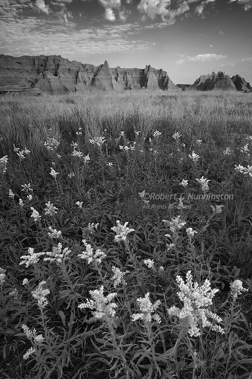 A late summer scene, rendered in  monochrome, of the Badlands National Park in South Dakota, USA