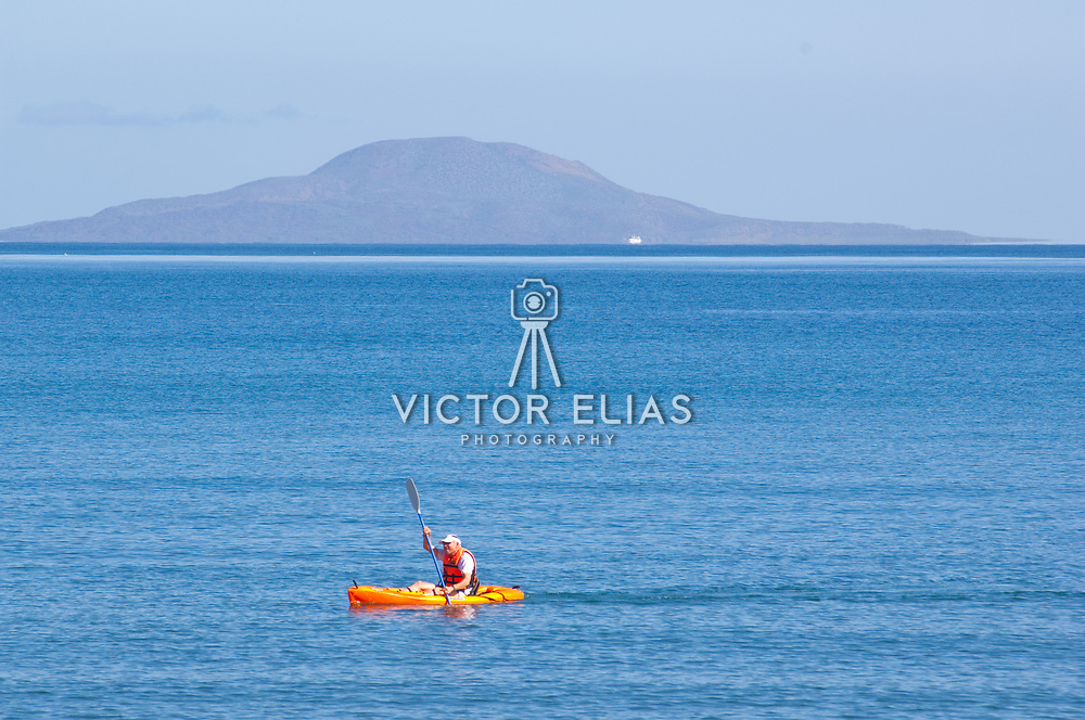 Kayakers outside of Loreto looking for dolphins.