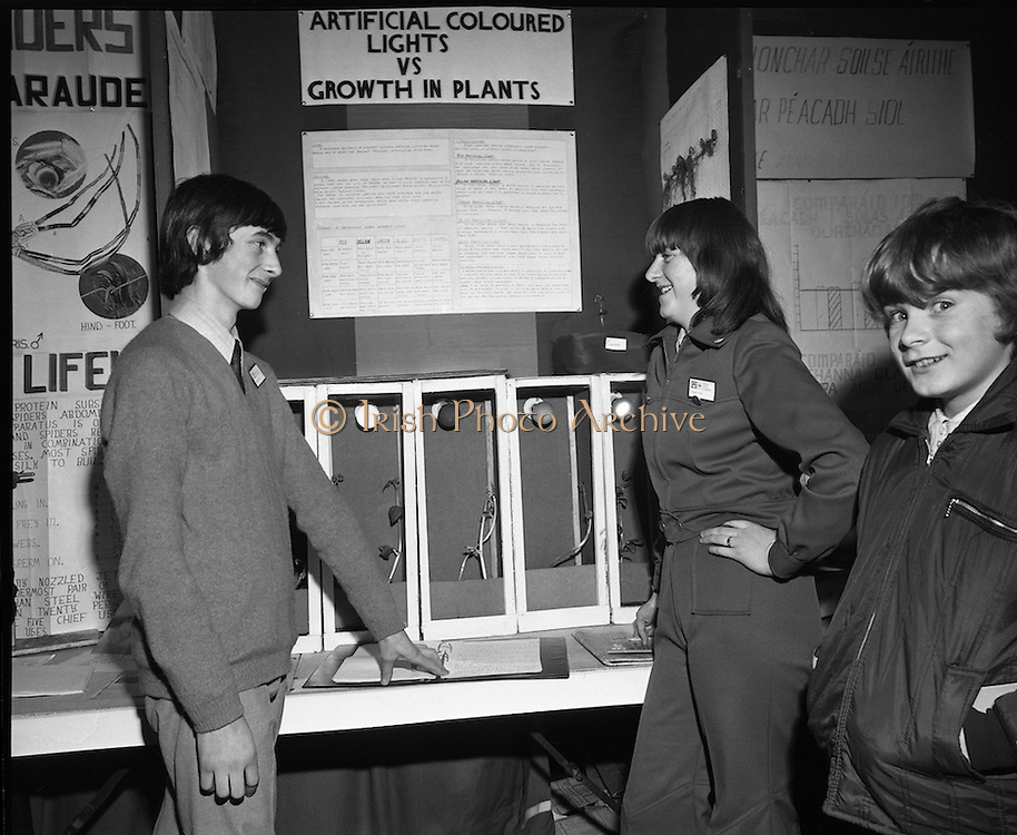 Young Scientist Of The Year..1974..04.01.1974..01.04.1974..4th January 1974..The Aer Lingus sponsored Young Scientist of the Year exhibition was held in the RDS,Dublin.Students from schools all around the country took part in the event..Image shows Con O'Mahony, Vocational School,Bandon,Cork whose project was on the effects of coloured,artificial lighting on plant growth and Pauline Sheehan,Presentation Convent,Bandon,Cork who did a project to investigate the causes of abortion in cows.