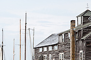 Masts in Harbor, Martha's Vineyard MA