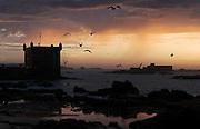 Essaouira ramparts.