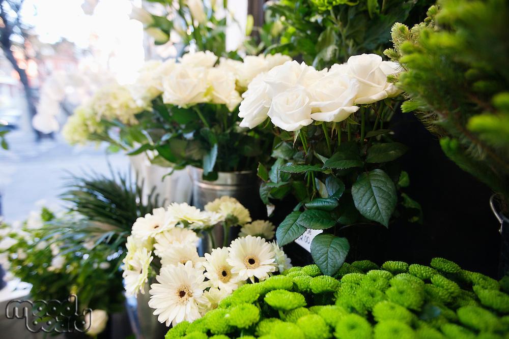 Bunch of fresh flowers at florist shop