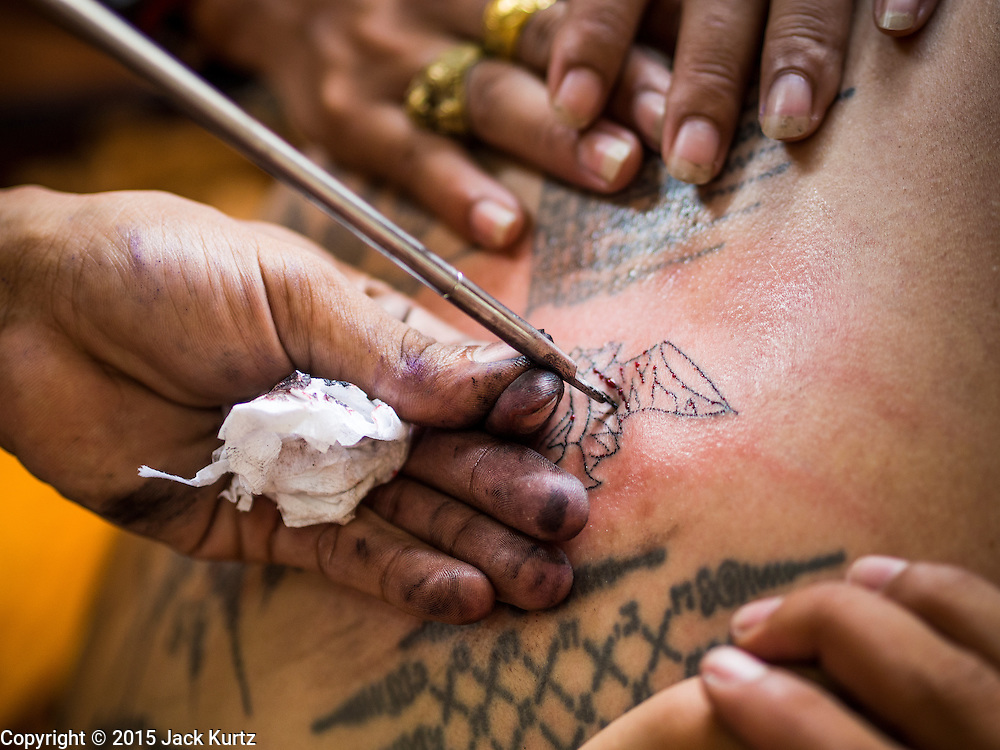 "07 MARCH 2015 - NAKHON CHAI SI, NAKHON PATHOM, THAILAND: Detail photo of a man getting a tattoo at the Wat Bang Phra tattoo festival. Wat Bang Phra is the best known ""Sak Yant"" tattoo temple in Thailand. It's located in Nakhon Pathom province, about 40 miles from Bangkok. The tattoos are given with hollow stainless steel needles and are thought to possess magical powers of protection. The tattoos, which are given by Buddhist monks, are popular with soldiers, policeman and gangsters, people who generally live in harm's way. The tattoo must be activated to remain powerful and the annual Wai Khru Ceremony (tattoo festival) at the temple draws thousands of devotees who come to the temple to activate or renew the tattoos. People go into trance like states and then assume the personality of their tattoo, so people with tiger tattoos assume the personality of a tiger, people with monkey tattoos take on the personality of a monkey and so on. In recent years the tattoo festival has become popular with tourists who make the trip to Nakorn Pathom province to see a side of ""exotic"" Thailand.   PHOTO BY JACK KURTZ"