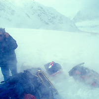 USA, Alaska, Denali National Park, (MR) Wolfgang Lerchl is blasted with snow from prop wash of ski plane on Kahiltna Glacier