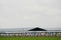 The peloton settles in for the ride from Modesto to San Jose during stage 3 of the 2008 Tour of California.