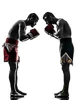 two  men exercising thai boxing saluting in silhouette studio on white background
