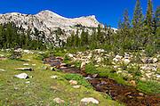 Unicorn Creek under Unicorn Peak, Tuolumne Meadows, Yosemite National Park, California USA