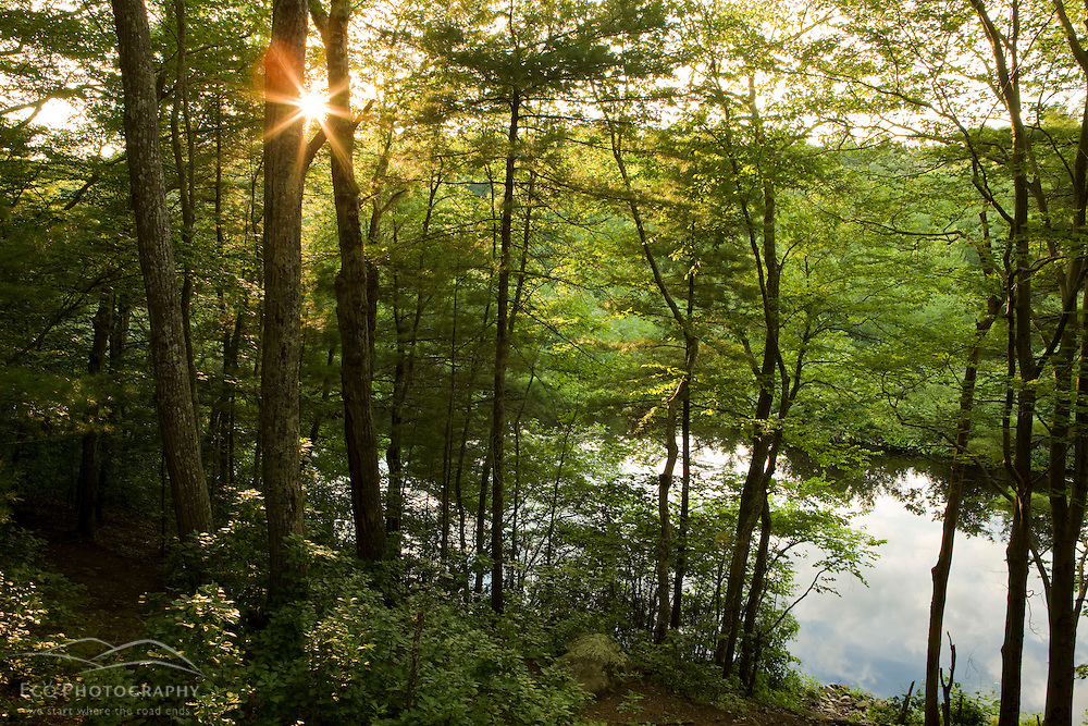 Indian Head River as seen through the forest at the Tucker Preserve in Pembroke, Massachusetts.  Sunset.