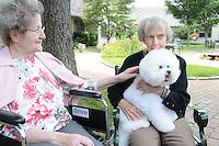 Bella with Seniors