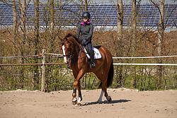 Minne Hoveenga, Esthzer de Melker<br /> Seldsum Stables en Seldsum Equine Fertility<br /> Jelsum 2019<br /> © Hippo Foto - Dirk Caremans<br /> 01/04/2019