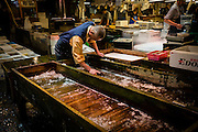 After the morning sale, a seller cleans up the caskets where the tuna is transported.