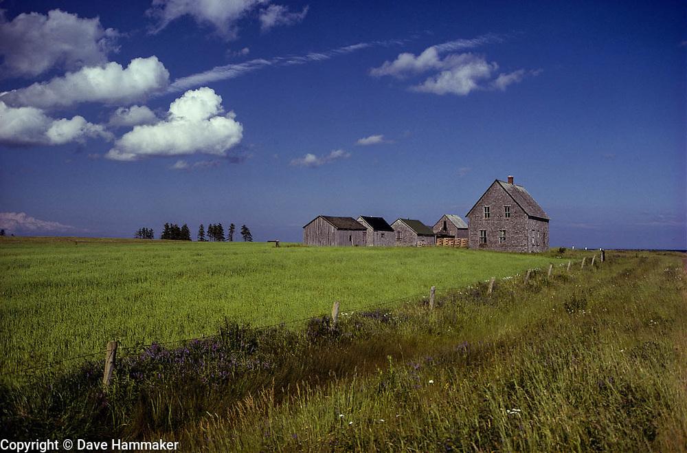 Farm, Prince Edward Island, Canada