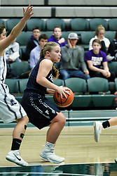 24 January 2019: Fieldcrest Knights v El Paso Gridley Titans Girls Basketball game during the McLean County Tournament at Shirk Center in Bloomington Illinois