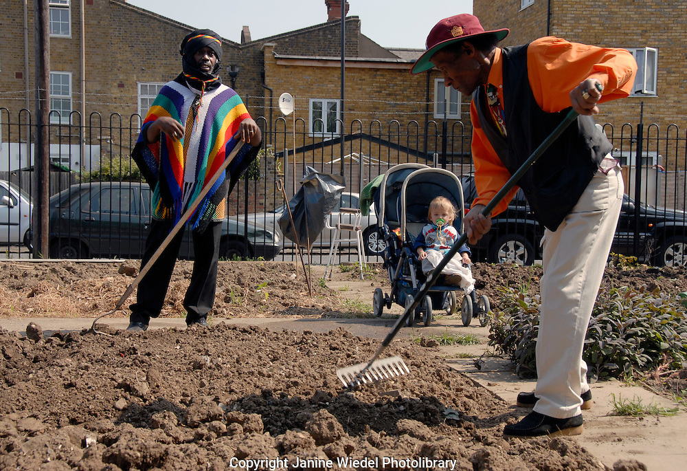 Learning skills of hoeing at allotment in South London on training course on Food growing for local BME residents.