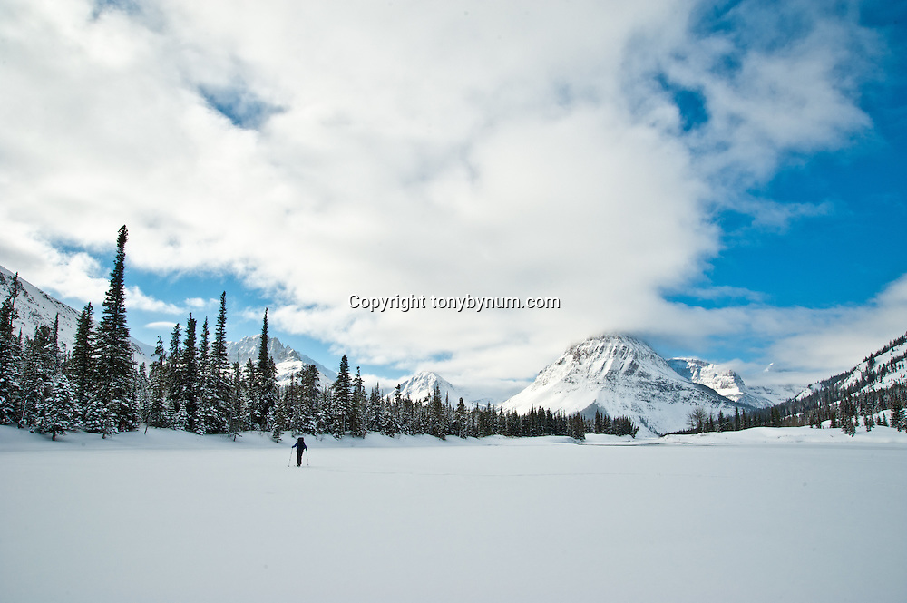woman backcountry skiing