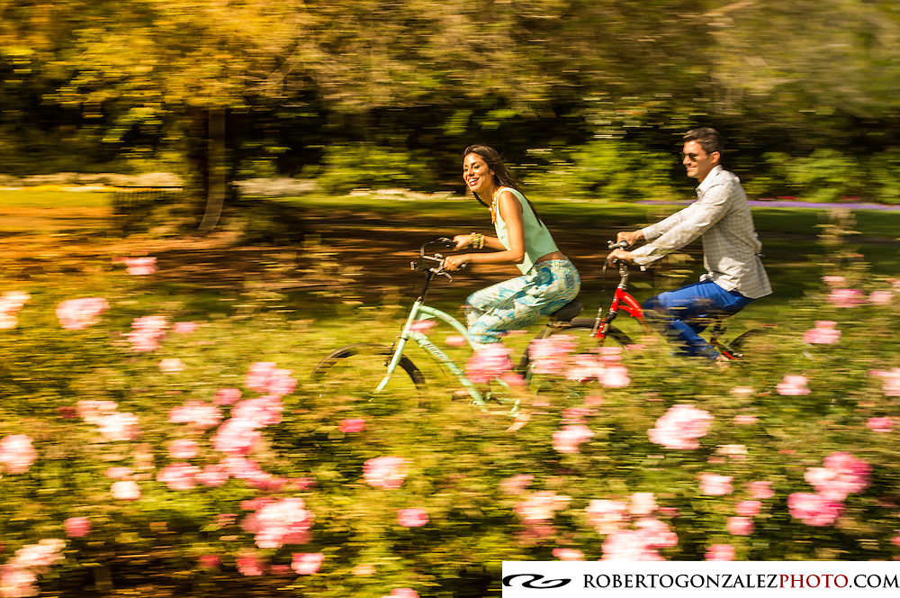 Bicycle riders in Leu Gardens, with Leu house and with roses in bloom in Orlando, Florida. Photo by Roberto Gonzalez