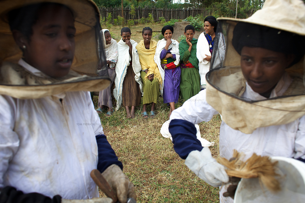 Wubalem (left) and other women dressed in protective clothing learn about honey production at the Ambrosia beekeeping demonstration and training centre in Mecha.<br /> <br /> Wubalem Shiferaw, age 23, lives in the village of Mecha with her husband Tsega Bekele, age 33, and their daughter Rekebki, age 4. Wubalem remembers her grandparents harvesting honey. She has maintained this tradition while moving to modern hives which produce a far greater yield of honey. Wubalem is a member of the Mecha village Cooperative which brings together local women beekeepers allowing them to share insights and build a credit union. The Mecha village Cooperative is not yet a member of the Zembaba Union. Wubalem's husband Tsega is a priest and a tailor. <br /> <br /> Harvesting honey supplements the income of small farmers in the Ethiopian region of Amhara where there is a long tradition of honey production. However, without the resources to properly invest in production and the continued use of of traditional, low-yielding hives, farmers have not been able to reap proper reward for their labour. <br /> <br /> The formation of the Zembaba Bee Products Development and Marketing Cooperative Union is an attempt to realize the potential of honey production in Amhara and ensure that the benefits reach small producers. <br /> <br /> By providing modern, high-yield hives, protective equipment and training to beekeepers, the Cooperative Union helps increase production and secure a steady supply of honey for which there is growing demand both in and beyond Ethiopia. The collective processing, marketing and distribution of Zembaba's &quot;Amar&quot; honey means that profits stay within the cooperative network of 3,500 beekeepers rather than being passed onto brokers and agents. The Union has signed an agreement with the multinational Ambrosia group to supply honey to the export market. <br /> <br /> Zembaba Bee Products Development and Marketing Cooperative Union also provides credit to individual members and trains carpenters in the production of modern hives. <br /> <br /> P