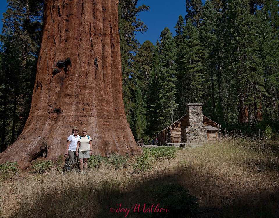 Sandra Dangle and Diane Russell at the site of the original Galen Clark cabin in the Mariposa grove of giant Sequoias.