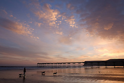 © Licensed to London News Pictures. <br /> 08/10/2014. <br /> <br /> Saltburn, United Kingdom<br /> <br /> A woman walks her dogs towards Saltburn pier on the beach at daybreak in Cleveland.<br /> <br /> Photo credit : Ian Forsyth/LNP