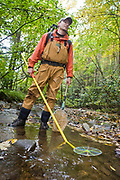 A grad student from UMCES Appalacian Lab takes water quality readings in a nearby creek.