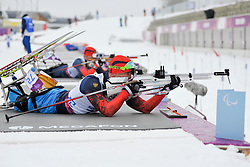 PETUSHKOV Roman, Biathlon at the 2014 Sochi Winter Paralympic Games, Russia