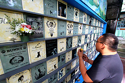 October 31, 2018 - Philippines - Pet lover John Tangkeko light up a candle on his departed dog name Miko at the Memorial Wall for departed pets inside Philippine Animal Welfare Society (PAWS) in Quezon City on October 31, 2018. (Credit Image: © Gregorio B. Dantes Jr/Pacific Press via ZUMA Wire)