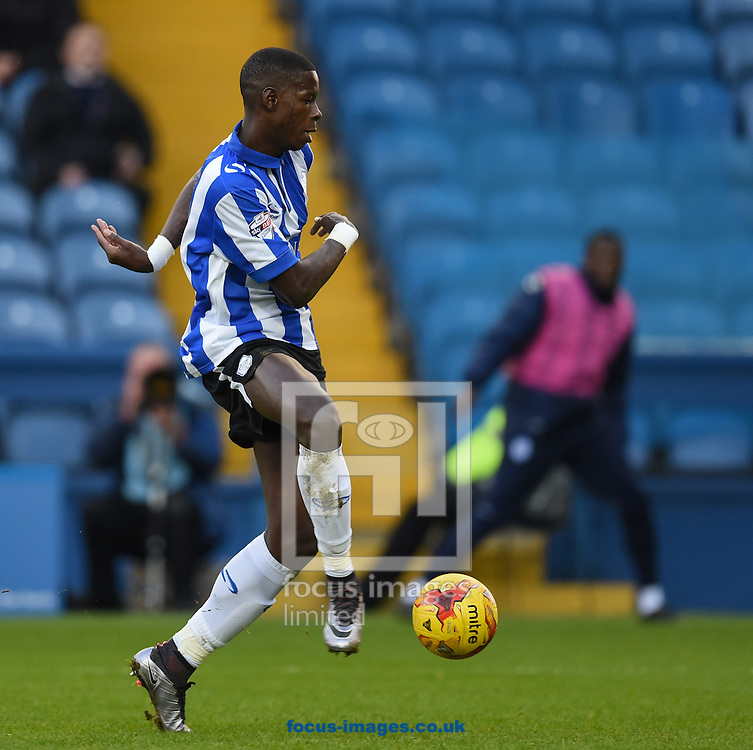 Lucas Joao of Sheffield Wednesday tries to side foot a shot past Carl Ikeme during the Sky Bet Championship match at Hillsborough, Sheffield<br /> Picture by Richard Land/Focus Images Ltd +44 7713 507003<br /> 20/12/2015