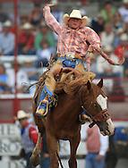 Rookie Saddle Bronc Rider, Joesy Hauser rides Basket Weave, 25 Jul 2007, Cheyenne Frontier Days