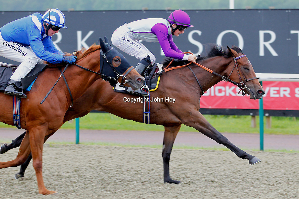 Peace and War and Harry Bentley winning the 2.10 race