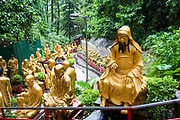 Asia, Southeast, People's Republic of China, Hong Kong, Statues of Buddha at the temple of 10,000 Buddhas